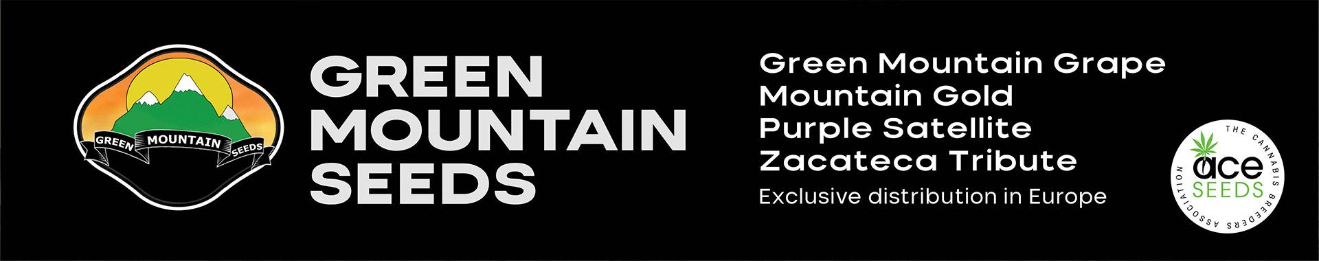 New Haze hybrids